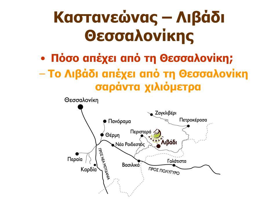 Καστανεώνας – Λιβάδι Θεσσαλονίκης Πόσο απέχει από τη Θεσσαλονίκη ; –Το Λιβάδι απέχει από τη Θεσσαλονίκη σαράντα χιλιόμετρα