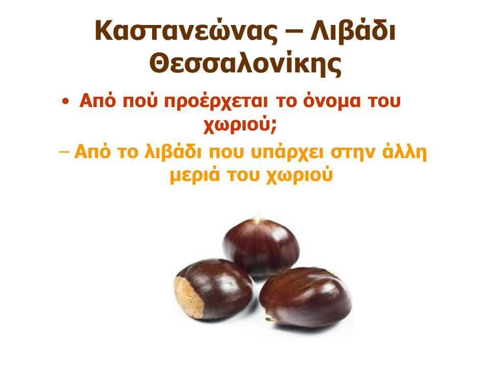 Καστανεώνας – Λιβάδι Θεσσαλονίκης Από πού προέρχεται το όνομα του χωριού ; –Από το λιβάδι που υπάρχει στην άλλη μεριά του χωριού
