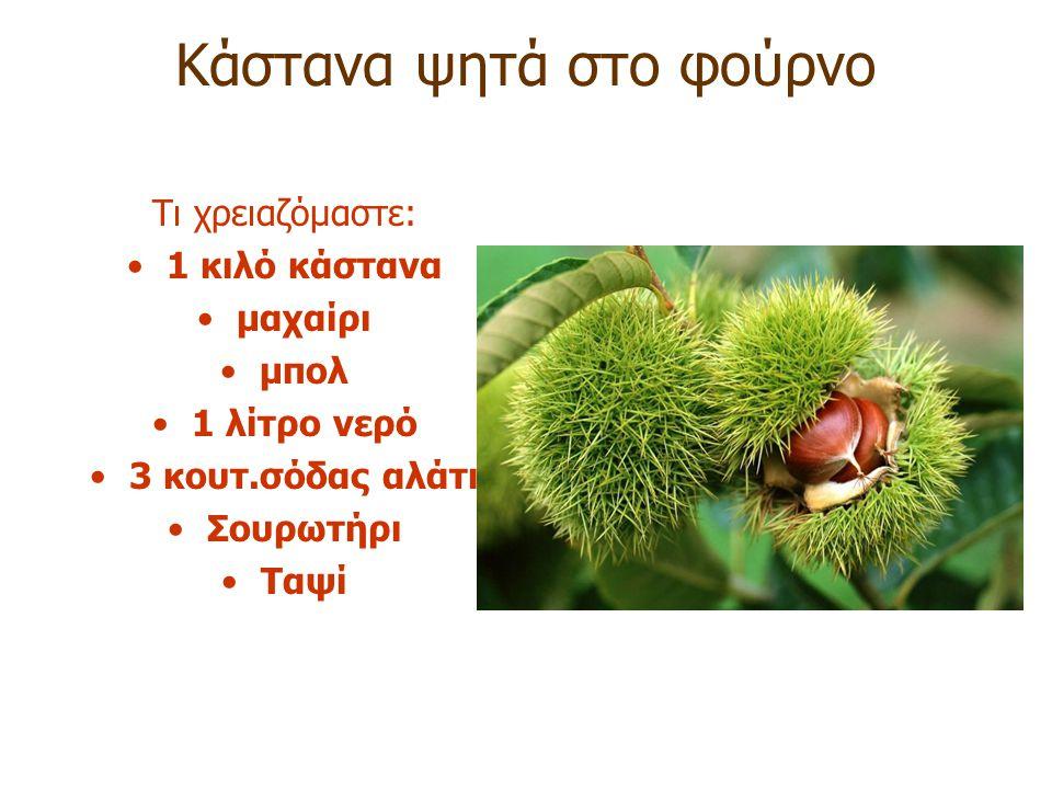 Καστανεώνας – Λιβάδι Θεσσαλονίκης Κάθε πότε βγάζουν καρπούς τα δέντρα ; –Ανθίζουν την Άνοιξη και γίνονται τον Οκτώβριο
