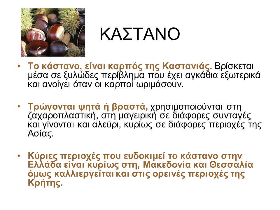 ΚΑΣΤΑΝΟ Το κάστανο, είναι καρπός της Καστανιάς.