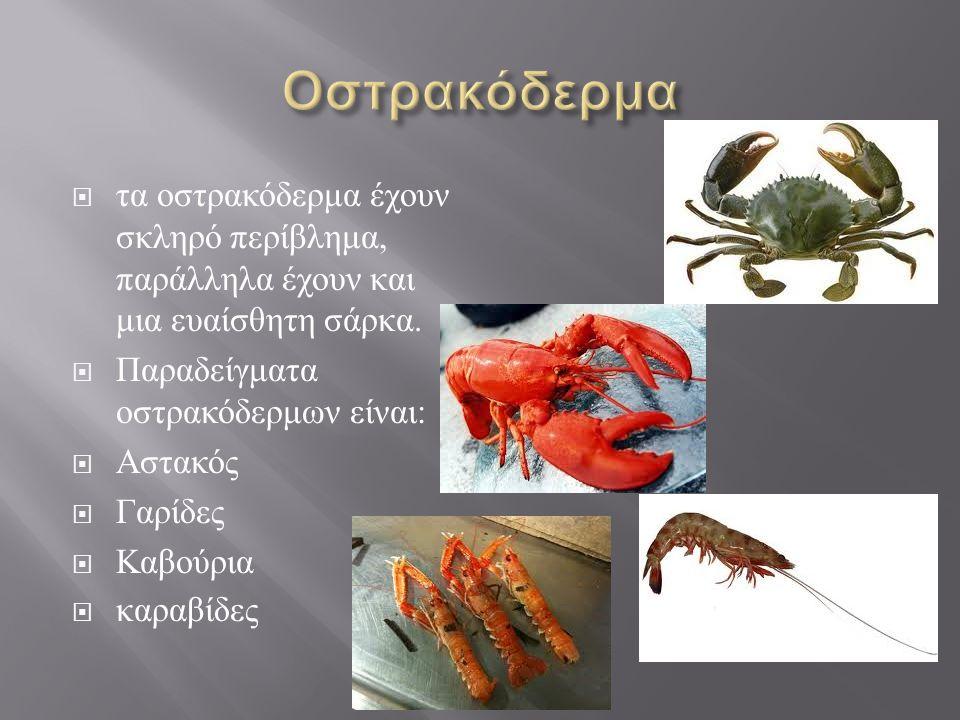  Στα μαλάκια περιλαμβάνονται διάφορα είδη όπως  τα σαλιγκάρια  οι αχιβάδες  τα μύδια  στρείδια,  κυδωνιά  Γυαλιστερές  από εξελικτικής άποψης είναι από τα πιο εξελιγμένα ανάμεσα στα ασπόνδυλα.