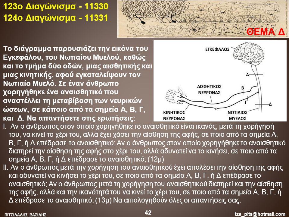 Το διάγραμμα παρουσιάζει την εικόνα του Εγκεφάλου, του Νωτιαίου Μυελού, καθώς και το τμήμα δύο οδών, μιας αισθητικής και μιας κινητικής, αφού εγκαταλε