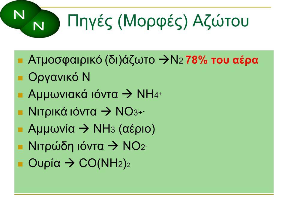 Πηγές (Μορφές) Αζώτου Ατμοσφαιρικό (δι)άζωτο  N 2 78% του αέρα Οργανικό N Αμμωνιακά ιόντα  NH 4 + Νιτρικά ιόντα  NO 3+ - Αμμωνία  NH 3 (αέριο) Νιτ