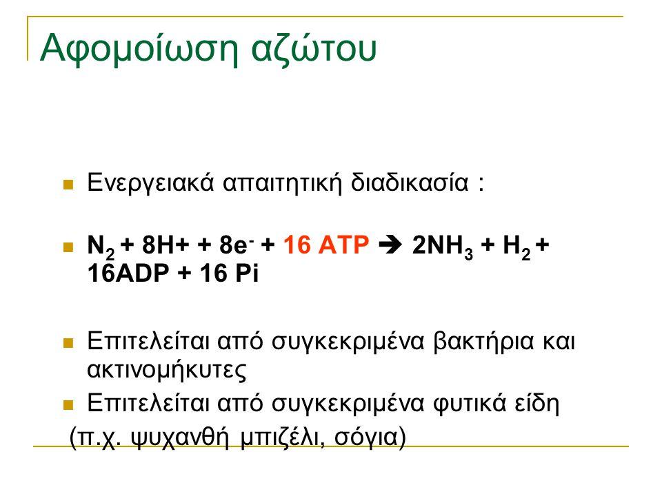 Αφομοίωση αζώτου Ενεργειακά απαιτητική διαδικασία : N 2 + 8H+ + 8e - + 16 ATP  2NH 3 + H 2 + 16ADP + 16 Pi Επιτελείται από συγκεκριμένα βακτήρια και