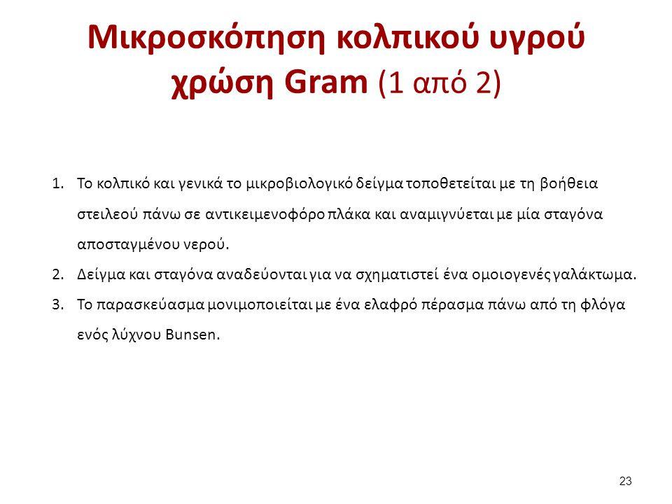 Μικροσκόπηση κολπικού υγρού χρώση Gram (1 από 2) 23 1.To κολπικό και γενικά το μικροβιολογικό δείγμα τοποθετείται με τη βοήθεια στειλεού πάνω σε αντικ