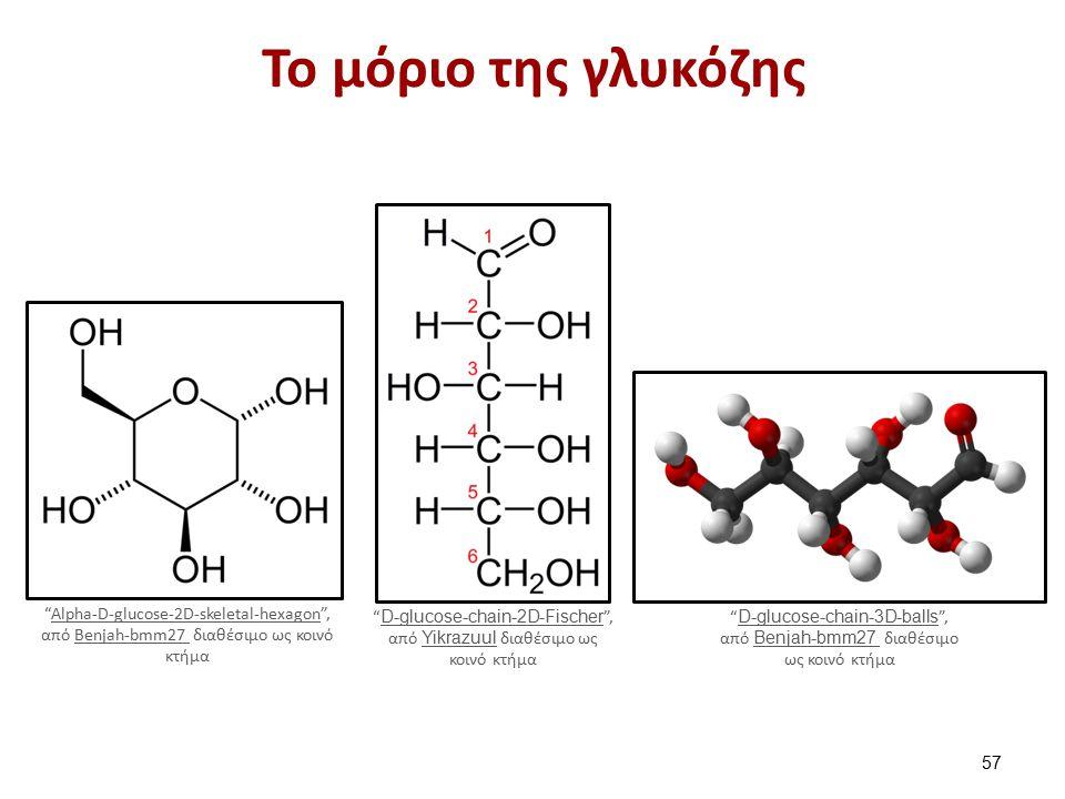 Το μόριο της γλυκόζης Alpha-D-glucose-2D-skeletal-hexagon , από Benjah-bmm27 διαθέσιμο ως κοινό κτήμαAlpha-D-glucose-2D-skeletal-hexagonBenjah-bmm27 D-glucose-chain-2D-Fischer , από Yikrazuul διαθέσιμο ως κοινό κτήμα D-glucose-chain-2D-Fischer Yikrazuul D-glucose-chain-3D-balls , από Benjah-bmm27 διαθέσιμο ως κοινό κτήμα D-glucose-chain-3D-balls Benjah-bmm27 57