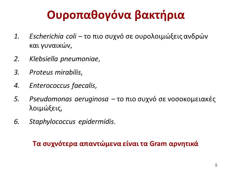 Πυοσφαίρια Πρόκειται συνήθως για ουδετερόφιλα 16 panji1102.blogspot.gr
