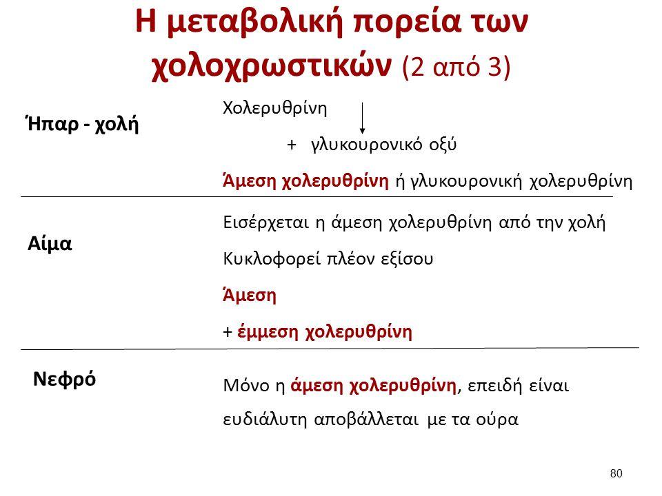 Η μεταβολική πορεία των χολοχρωστικών (2 από 3) 80 Ήπαρ - χολή Χολερυθρίνη + γλυκουρονικό οξύ Άμεση χολερυθρίνη ή γλυκουρονική χολερυθρίνη Αίμα Εισέρχεται η άμεση χολερυθρίνη από την χολή Κυκλοφορεί πλέον εξίσου Άμεση + έμμεση χολερυθρίνη Νεφρό Μόνο η άμεση χολερυθρίνη, επειδή είναι ευδιάλυτη αποβάλλεται με τα ούρα