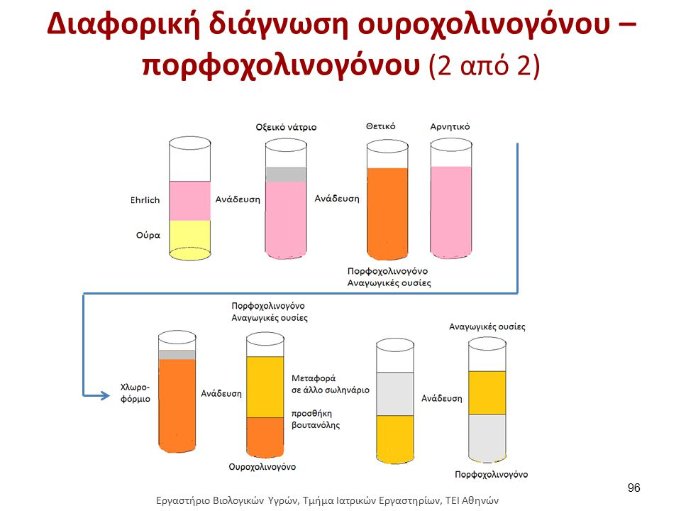 Διαφορική διάγνωση ουροχολινογόνου – πορφοχολινογόνου (2 από 2) 96 Εργαστήριο Βιολογικών Υγρών, Τμήμα Ιατρικών Εργαστηρίων, ΤΕΙ Αθηνών