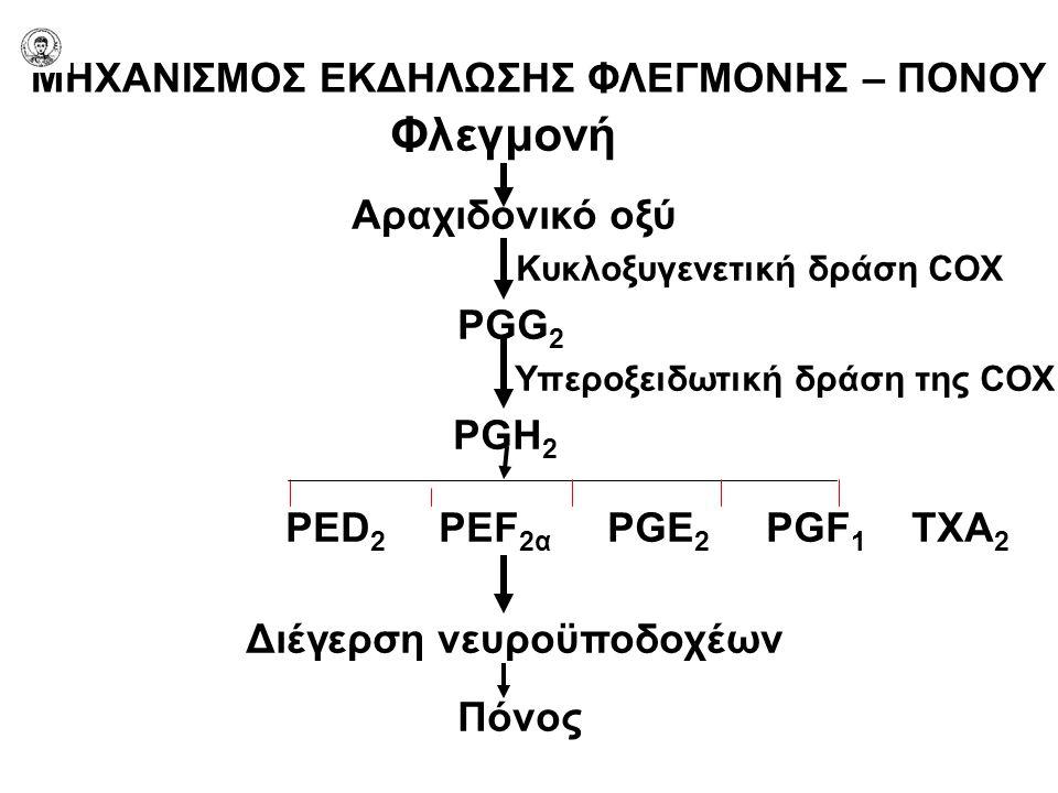 Φλεγμονή Αραχιδονικό οξύ Κυκλοξυγενετική δράση COX PGG 2 Υπεροξειδωτική δράση της COX PGH 2 PED 2 PEF 2α PGE 2 PGF 1 TXA 2 Διέγερση νευροϋποδοχέων Πόν