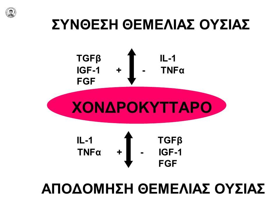 ΣΥΝΘΕΣΗ ΘΕΜΕΛΙΑΣ ΟΥΣΙΑΣ TGFβ IL-1 IGF-1 + - TNFα FGF ΧΟΝΔΡΟΚΥΤΤΑΡΟ IL-1 TGFβ TNFα + - IGF-1 FGF ΑΠΟΔΟΜΗΣΗ ΘΕΜΕΛΙΑΣ ΟΥΣΙΑΣ