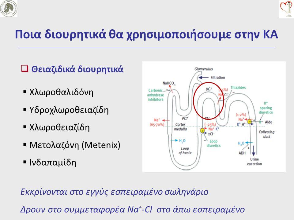  Θειαζιδικά διουρητικά Ποια διουρητικά θα χρησιμοποιήσουμε στην ΚΑ Εκκρίνονται στο εγγύς εσπειραμένο σωληνάριο Δρουν στο συμμεταφορέα Na + -Cl - στο