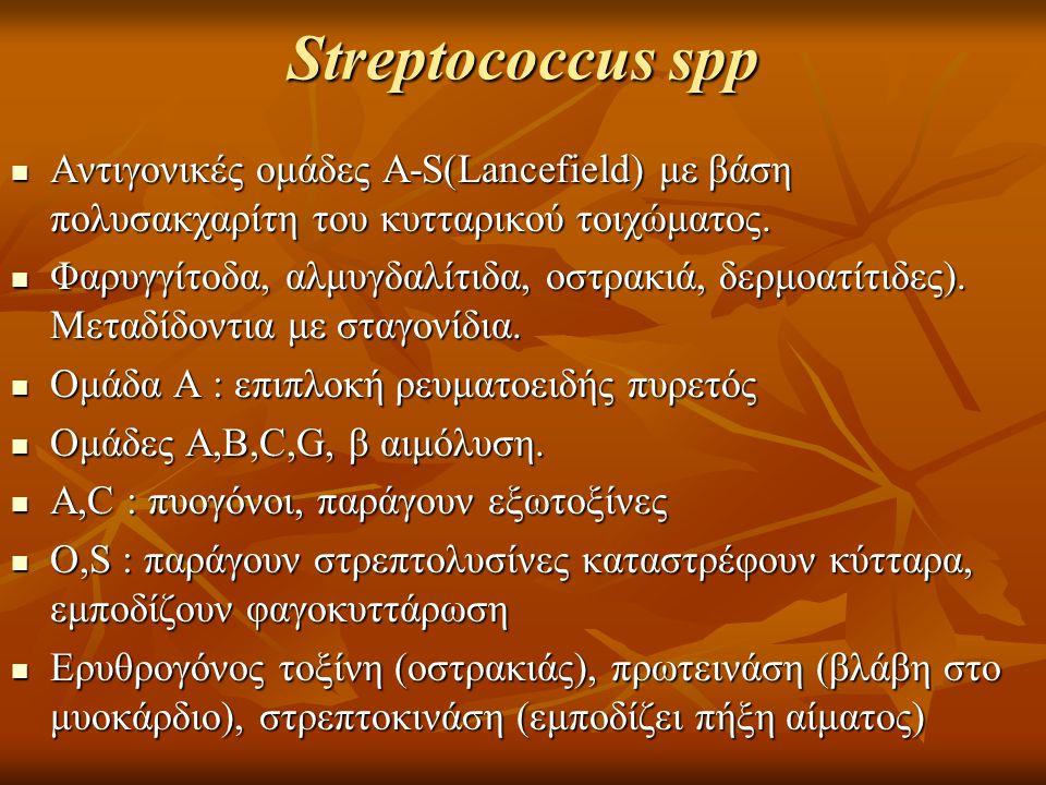 Streptococcus spp Αντιγονικές ομάδες A-S(Lancefield) με βάση πολυσακχαρίτη του κυτταρικού τοιχώματος.