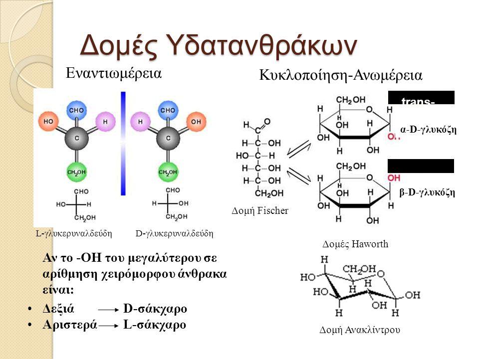 Αντιδράσεις υδατανθράκων Αντιδράσεις C=O Οξείδωση σε -COOH Αναγωγή σε -OH Αντιδράσεις -ΟΗ Σχηματισμός εστέρα Σχηματισμός αιθέρα Οξείδωση σε C=O Αναγωγή σε δεοξυ Αντικατάσταση με NH 2, SH, X Αντιδράσεις ανωμερικού -ΟΗ Σχηματισμός γλυκόσυλο- αλογονιδίων Οξείδωση σε λακτόνες Αντιδράσεις C=O και -ΟΗ Κυκλικές ημιακετάλες (πυρανόζη/φουρανόζη) Σχηματισμός ακεταλών (γλυκοζίτες) Ισομερείωση αλδόζης/κετόζης