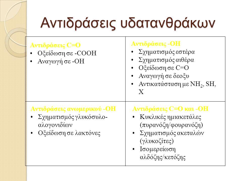 Μονοσακχαρίτες Πεντόζες D-ξυλόζη D-ριβόζη D-αραβινόζη Άχυρα, ξύλο, φρούτα Κόμμεα, πηκτινικές ύλες, φρούτα Νουκλεϊνικά οξέα, συνένζυμο της βιταμίνης Β 12