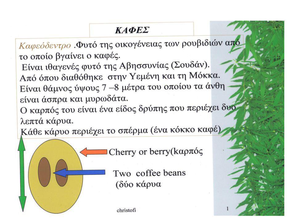 Εργασία στην τάξη Ονομάστε είδη του καφέ που γνωρίζετε μέχρι σήμερα -------------------------------- ------------------------------------- -------------------------------- -------------------------- --------------------------------------- --------------------------------------- -------------------------------- -------------------------------------------- ----------------------------------- Τα βρήκατε όλα ;Δέστε την επόμενη διαφάνεια Δούλεψε και με τον διπλανο σου