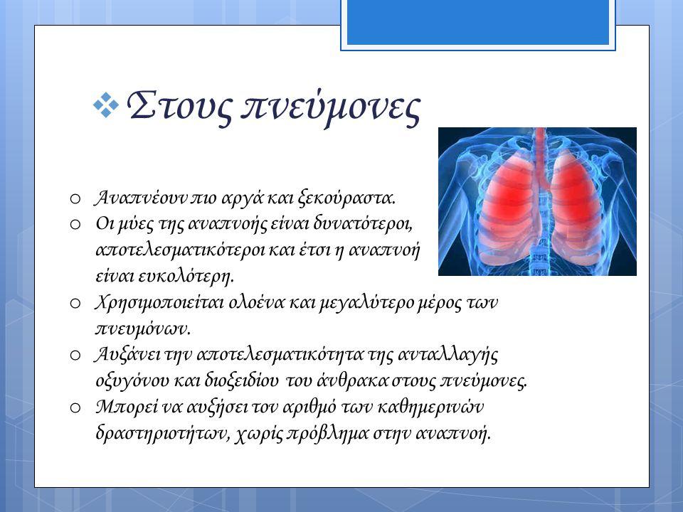  Στους πνεύμονες o Αναπνέουν πιο αργά και ξεκούραστα. o Οι μύες της αναπνοής είναι δυνατότεροι, αποτελεσματικότεροι και έτσι η αναπνοή είναι ευκολότε