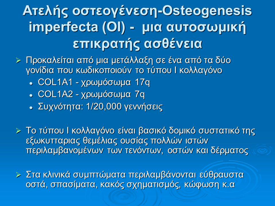 Ατελής οστεογένεση-Osteogenesis imperfecta (OI) - μια αυτοσωμική επικρατής ασθένεια  Προκαλείται από μια μετάλλαξη σε ένα από τα δύο γονίδια που κωδικοποιούν το τύπου I κολλαγόνο COL1A1 - χρωμόσωμα 17q COL1A1 - χρωμόσωμα 17q COL1A2 - χρωμόσωμα 7q COL1A2 - χρωμόσωμα 7q Συχνότητα: 1/20,000 γεννήσεις Συχνότητα: 1/20,000 γεννήσεις  Το τύπου I κολλαγόνο είναι βασικό δομικό συστατικό της εξωκυτταριας θεμέλιας ουσίας πολλών ιστών περιλαμβανομένων των τενόντων, οστών και δέρματος  Στα κλινικά συμπτώματα περιλαμβάνονται εύθραυστα οστά, σπασίματα, κακός σχηματισμός, κώφωση κ.α