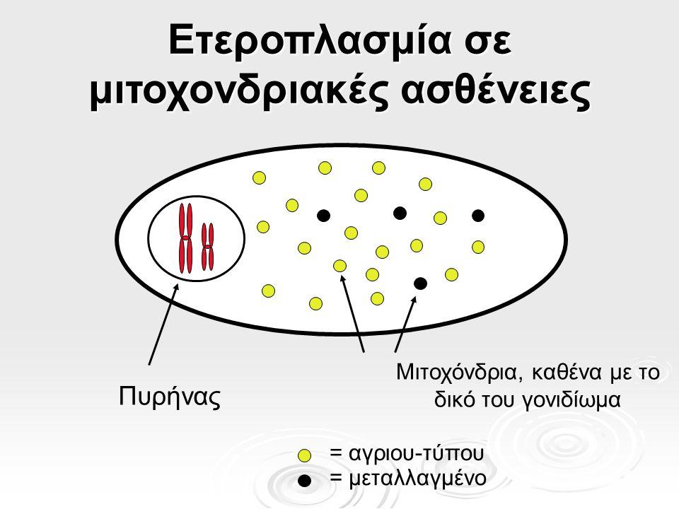 Ετεροπλασμία σε μιτοχονδριακές ασθένειες Πυρήνας Μιτοχόνδρια, καθένα με το δικό του γονιδίωμα = αγριου-τύπου = μεταλλαγμένο