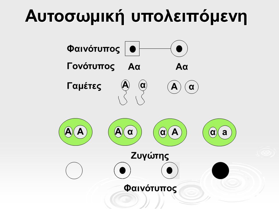 Ποικίλη εκφραστικότητα  Η ποικίλη έκταση ή ένταση των φαινοτυπικών συμπτωμάτων μεταξύ ατόμων με τον ίδιο γονότυπο Διαφορετικά άτομα μέσα σε μια οικογένεια με την ίδια ασθένεια εμφανίζουν διαφορετικής βαρύτητας συμπτώματα Διαφορετικά άτομα μέσα σε μια οικογένεια με την ίδια ασθένεια εμφανίζουν διαφορετικής βαρύτητας συμπτώματα  Αιτίες.
