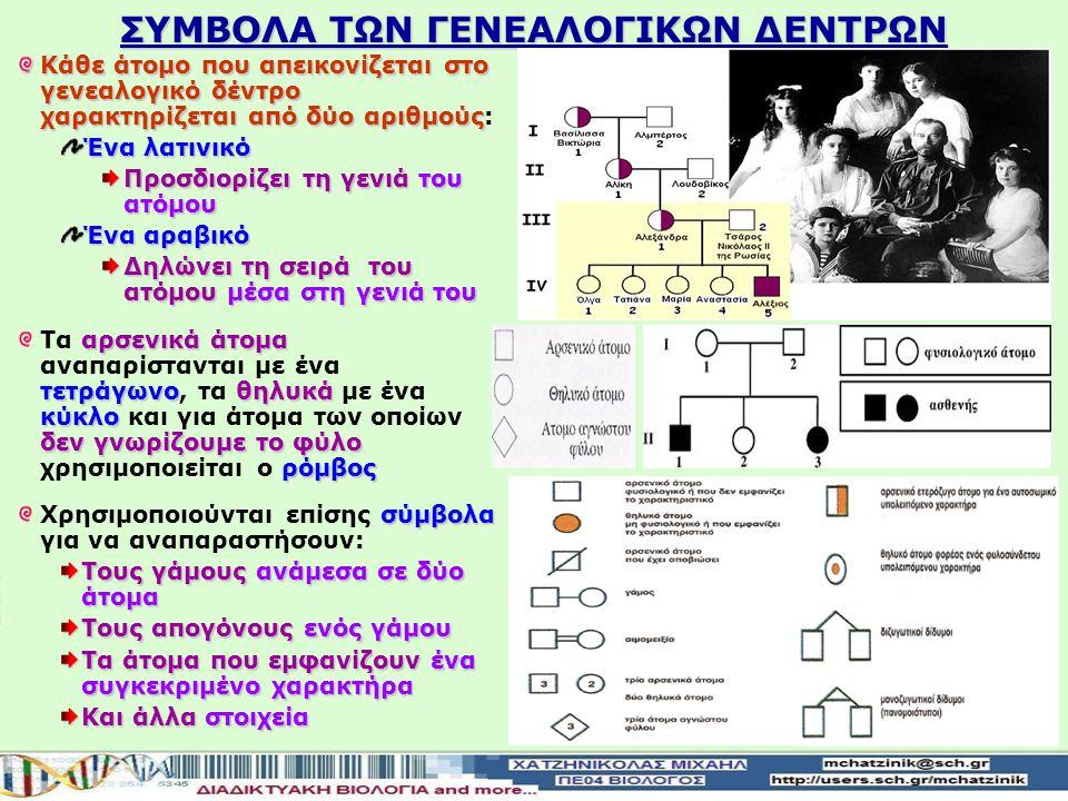 ΓΕΝΕΑΛΟΓΙΚΑ ΔΕΝΤΡΑ Οι πληροφορίες που συλλέγονται από το ιστορικό μιας οικογένειας για έναν ορισμένο χαρακτήρα αναπαριστώνται σε ένα γενεαλογικό δένδρο Το γενεαλογικό δένδρο είναι η διαγραμματική απεικόνιση των μελών μιας οικογένειας για πολλές γενεέςστην οποία αναπαριστώνται Το γενεαλογικό δένδρο είναι η διαγραμματική απεικόνιση των μελών μιας οικογένειας για πολλές γενεές, στην οποία αναπαριστώνται: γάμοι Οι γάμοι σειρά των γεννήσεων Η σειρά των γεννήσεων φύλο Το φύλο των ατόμων φαινότυπος και ο φαινότυπος του σε σχέση με κάποιο συγκεκριμένο χαρακτήρα