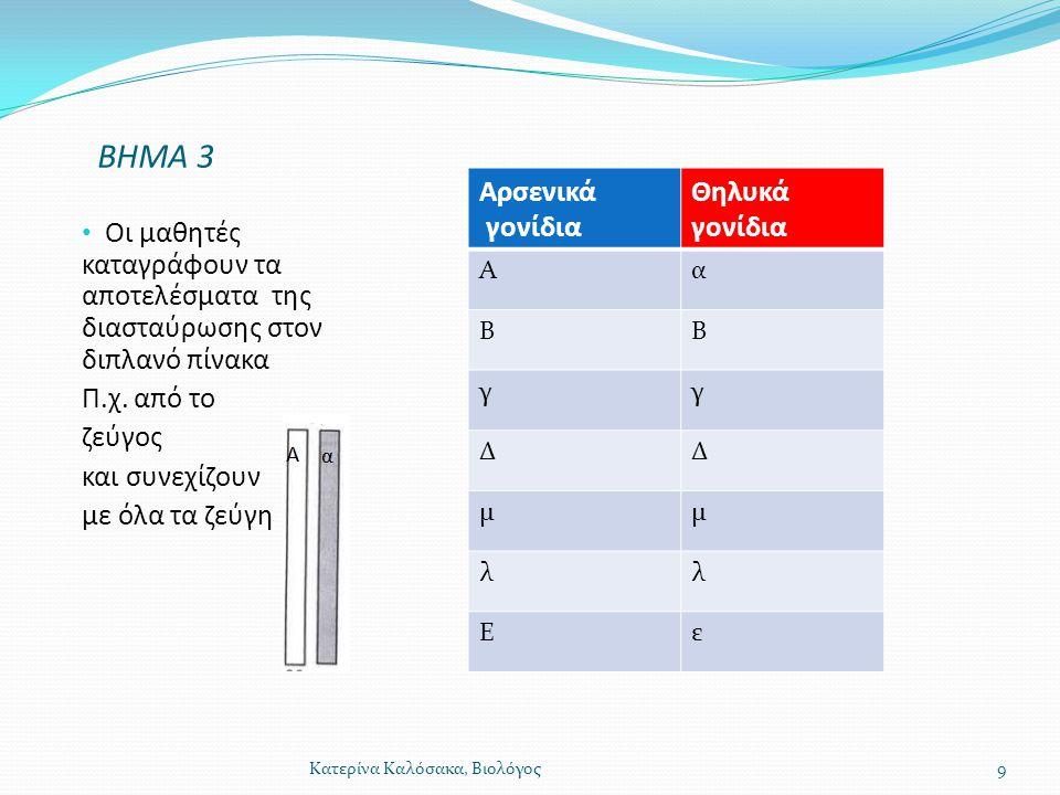 ΒΗΜΑ 3 Οι μαθητές καταγράφουν τα αποτελέσματα της διασταύρωσης στον διπλανό πίνακα Π.χ. από το ζεύγος και συνεχίζουν με όλα τα ζεύγη Αρσενικά γονίδια