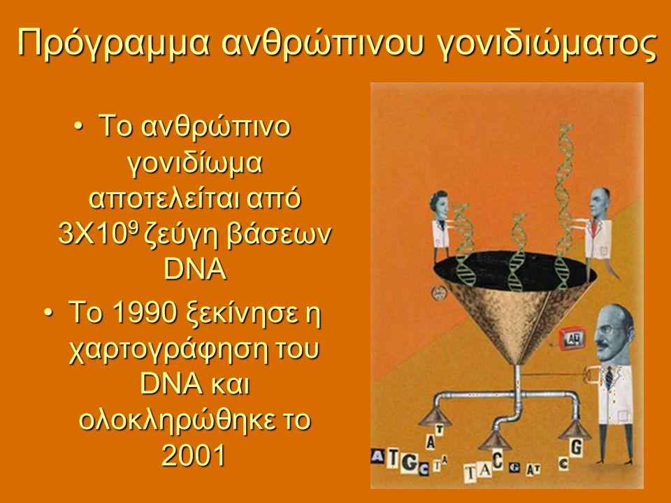 Το ανθρώπινο γονιδίωμα αποτελείται από 3Χ10 9 ζεύγη βάσεων DNAΤο ανθρώπινο γονιδίωμα αποτελείται από 3Χ10 9 ζεύγη βάσεων DNA Το 1990 ξεκίνησε η χαρτογ
