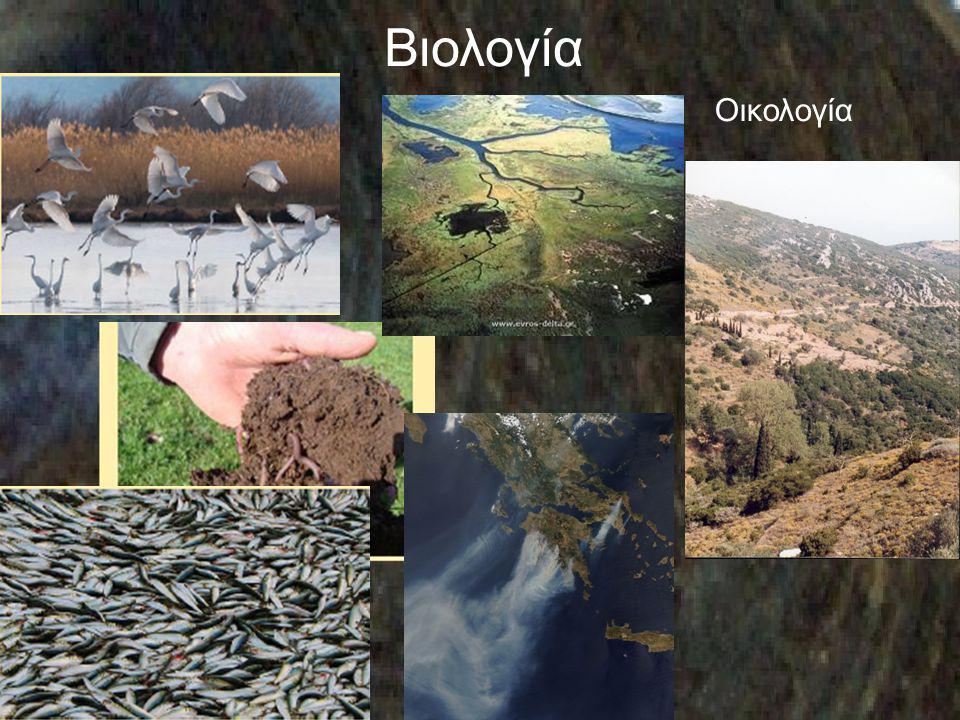 Βιολογία Οικολογία