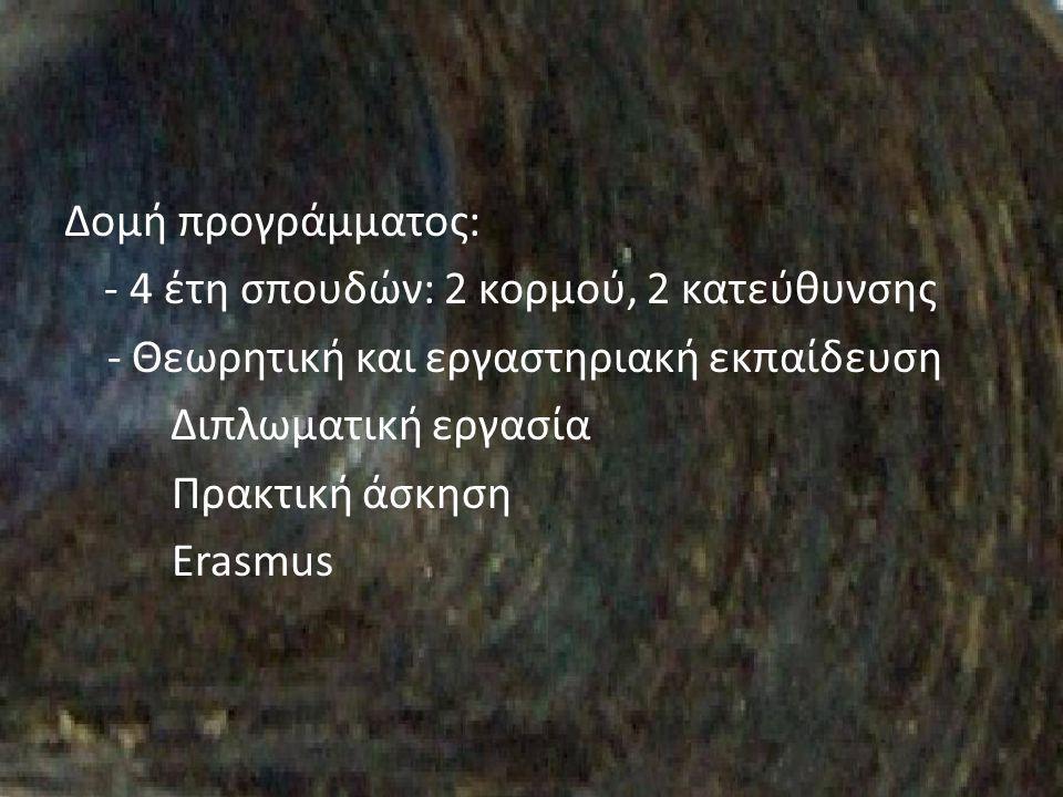 Δομή προγράμματος: - 4 έτη σπουδών: 2 κορμού, 2 κατεύθυνσης - Θεωρητική και εργαστηριακή εκπαίδευση Διπλωματική εργασία Πρακτική άσκηση Erasmus