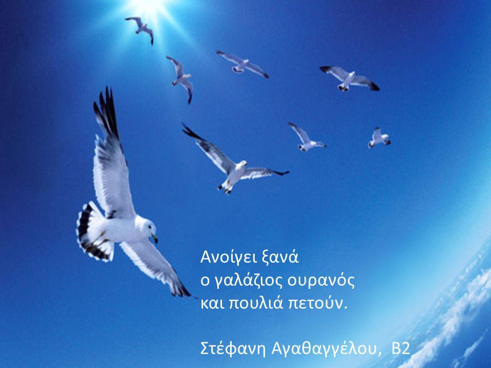 Ανοίγει ξανά ο γαλάζιος ουρανός και πουλιά πετούν. Στέφανη Αγαθαγγέλου, Β2