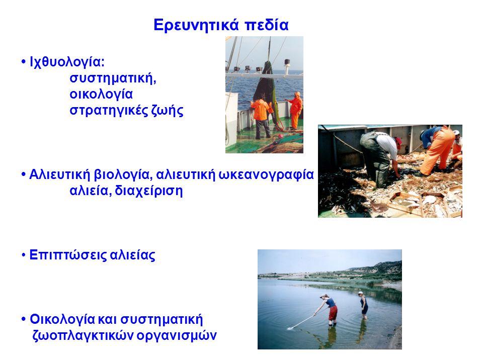 Ερευνητικά πεδία Ιχθυολογία: συστηματική, οικολογία στρατηγικές ζωής Αλιευτική βιολογία, αλιευτική ωκεανογραφία αλιεία, διαχείριση Επιπτώσεις αλιείας