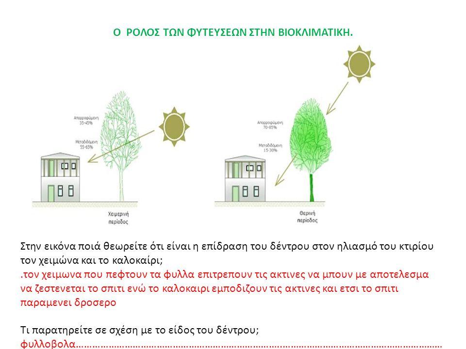 Ο ΡΟΛΟΣ ΤΩΝ ΦΥΤΕΥΣΕΩΝ ΣΤΗΝ ΒΙΟΚΛΙΜΑΤΙΚΗ. Στην εικόνα ποιά θεωρείτε ότι είναι η επίδραση του δέντρου στον ηλιασμό του κτιρίου τον χειμώνα και το καλοκα