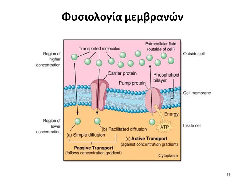 10 Παράγοντες που επηρεάζουν την μετακίνηση υγρών και ηλεκτρολυτών Μεμβράνες Είδη μεταφοράς Διάχυση Διευκολυνόμενη διάχυση Ενεργητική μεταφορά Δυνάμει
