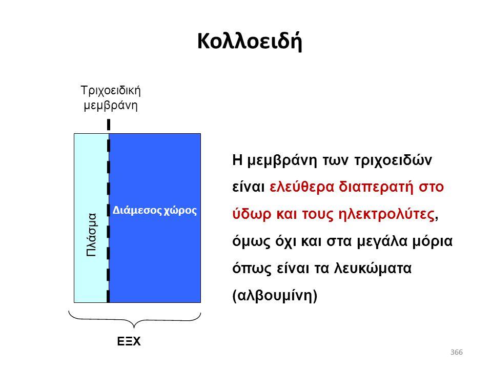 365 Κατανομή και επίδραση χορηγούμενων διαλυμάτων 365