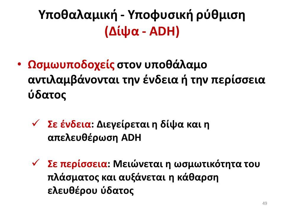 48 Υποθαλαμική - Υποφυσική ρύθμιση 48