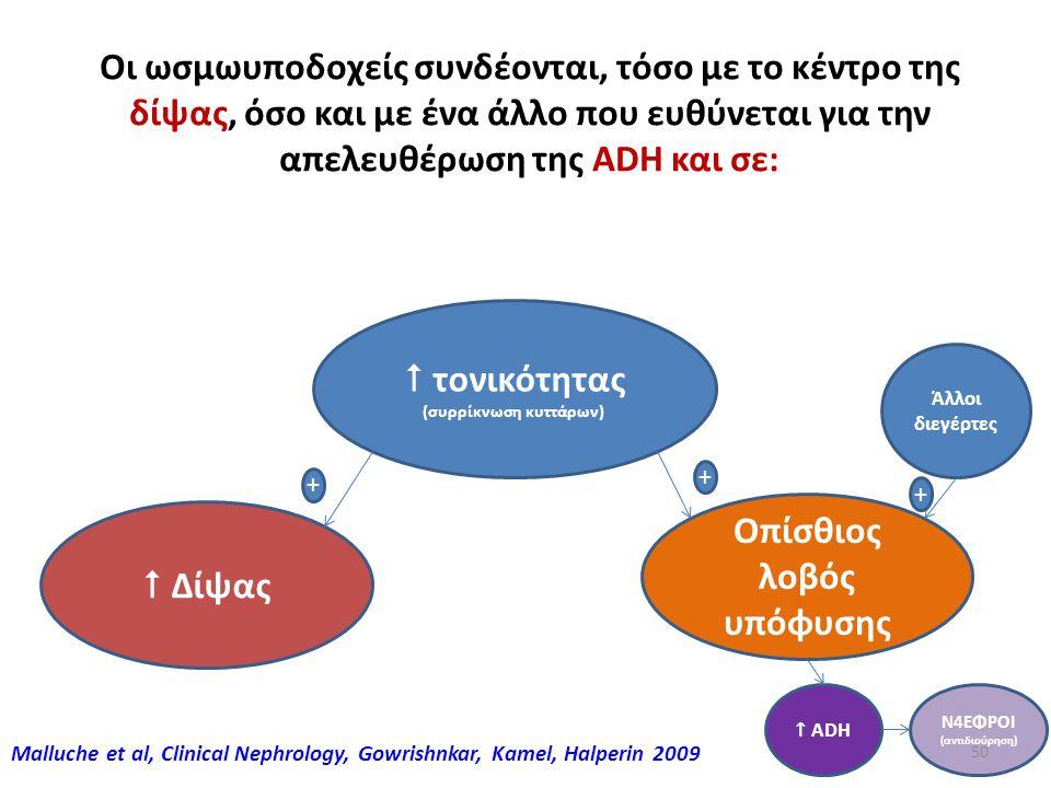 49 Υποθαλαμική - Υποφυσική ρύθμιση (Δίψα - ADH) Ωσμωυποδοχείς στον υποθάλαμο αντιλαμβάνονται την ένδεια ή την περίσσεια ύδατος Σε ένδεια: Διεγείρεται