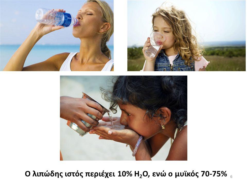 6 Ο λιπώδης ιστός περιέχει 10% Η 2 Ο, ενώ ο μυϊκός 70-75% 6