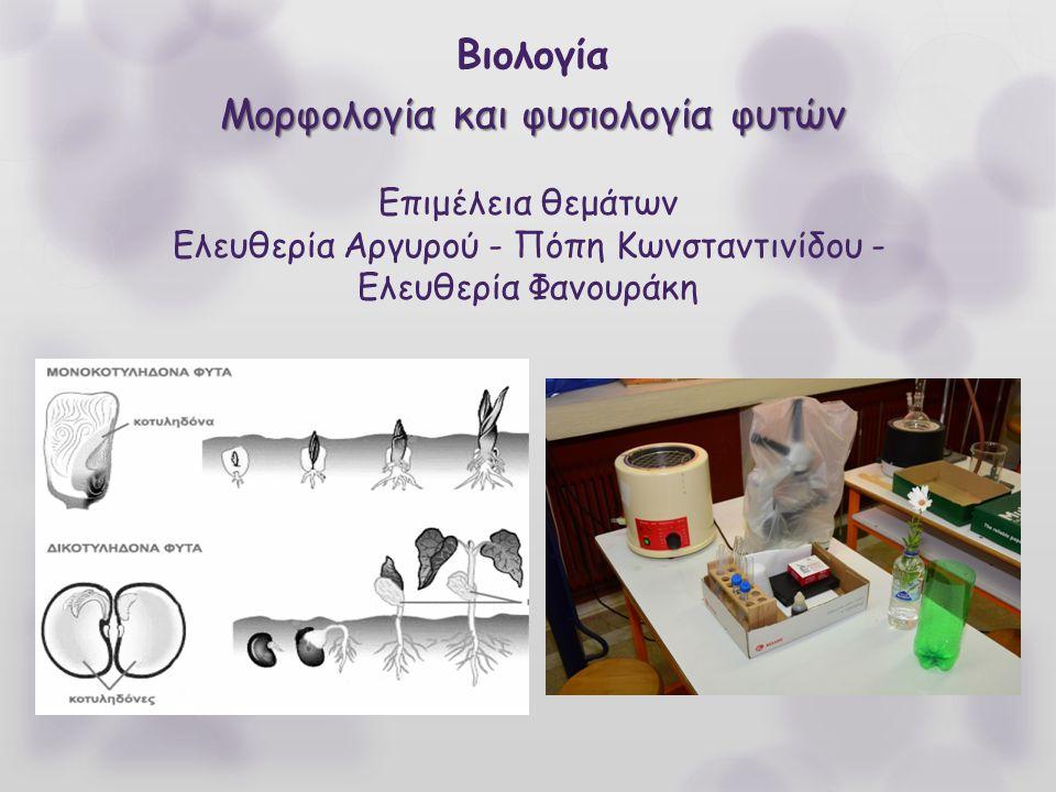 Μορφολογία και φυσιολογία φυτών Βιολογία Μορφολογία και φυσιολογία φυτών Επιμέλεια θεμάτων Ελευθερία Αργυρού - Πόπη Κωνσταντινίδου - Ελευθερία Φανουρά