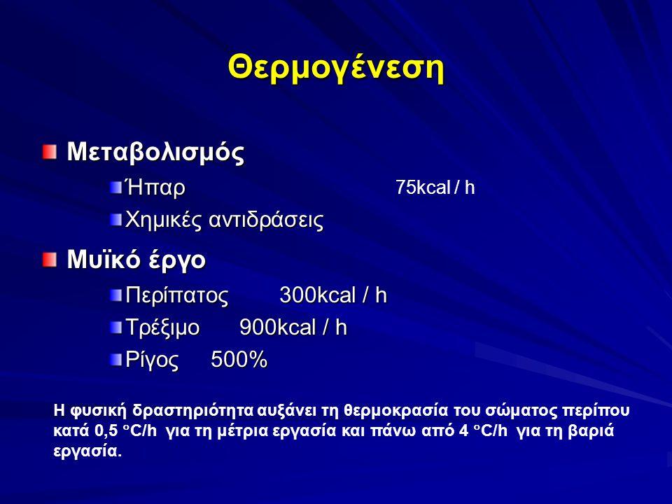 Θερμογένεση ΜεταβολισμόςΉπαρ Χημικές αντιδράσεις Μυϊκό έργο Περίπατος 300kcal / h Τρέξιμο 900kcal / h Ρίγος 500% Η φυσική δραστηριότητα αυξάνει τη θερ