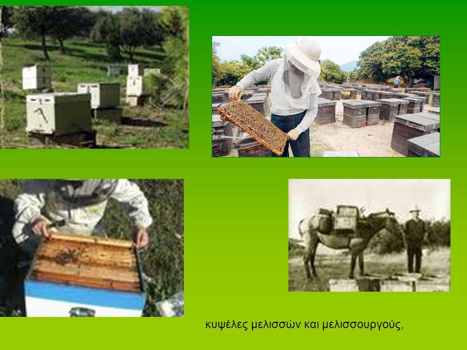 κυψέλες μελισσών και μελισσουργούς,
