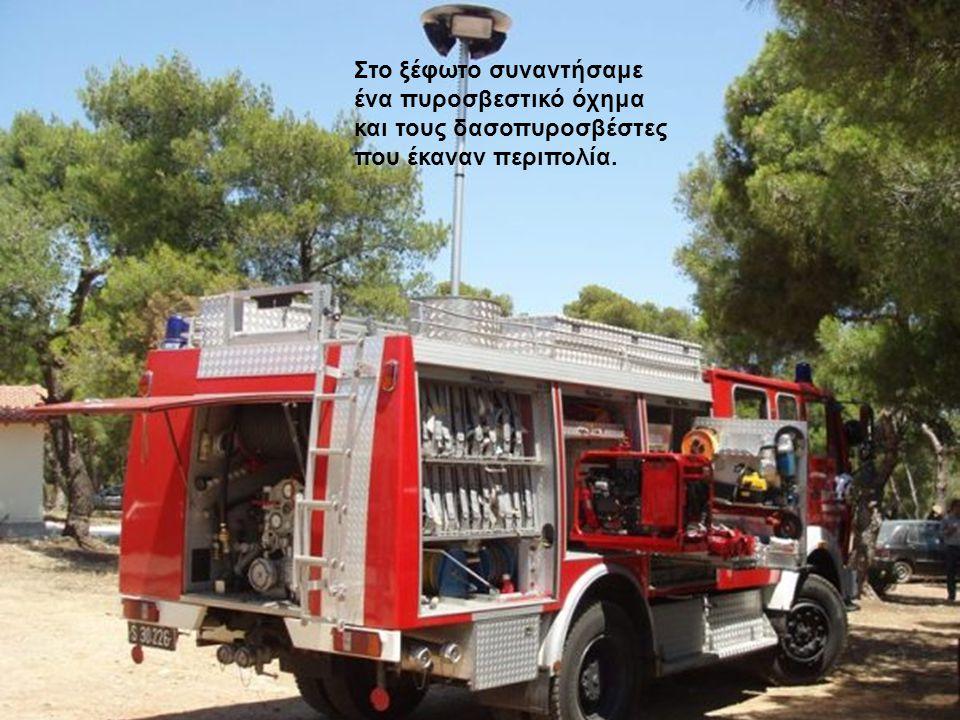 Στο ξέφωτο συναντήσαμε ένα πυροσβεστικό όχημα και τους δασοπυροσβέστες που έκαναν περιπολία.