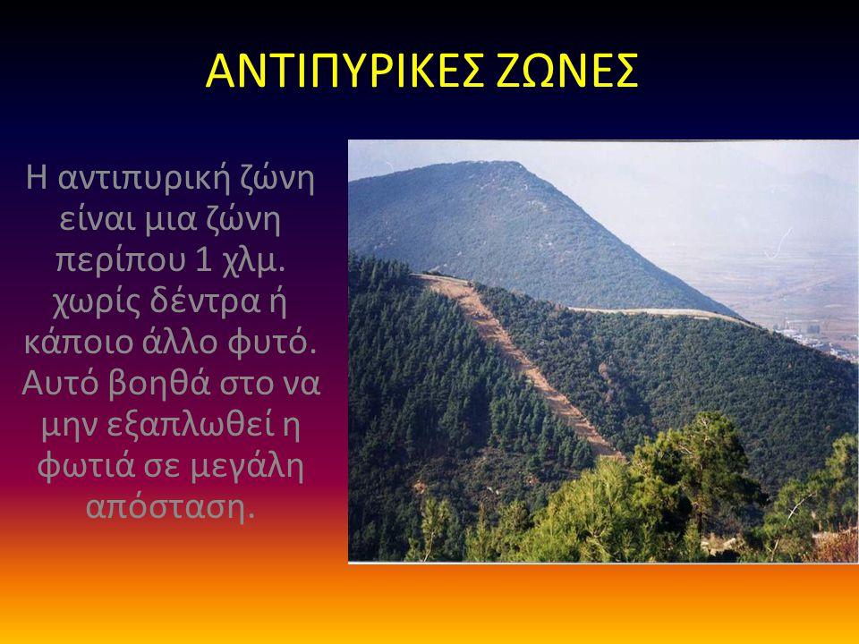 ΑΝΤΙΠΥΡΙΚΕΣ ΖΩΝΕΣ Η αντιπυρική ζώνη είναι μια ζώνη περίπου 1 χλμ. χωρίς δέντρα ή κάποιο άλλο φυτό. Αυτό βοηθά στο να μην εξαπλωθεί η φωτιά σε μεγάλη α