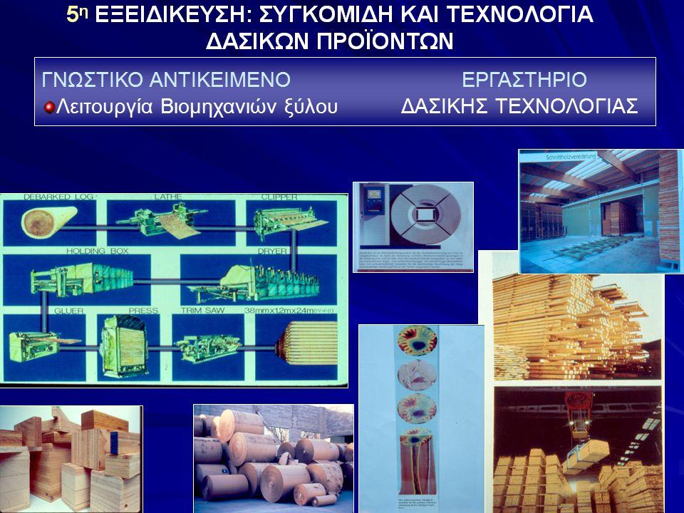ΓΝΩΣΤΙΚΟ ΑΝΤΙΚΕΙΜΕΝΟ ΕΡΓΑΣΤΗΡΙΟ Λειτουργία Βιομηχανιών ξύλου ΔΑΣΙΚΗΣ ΤΕΧΝΟΛΟΓΙΑΣ