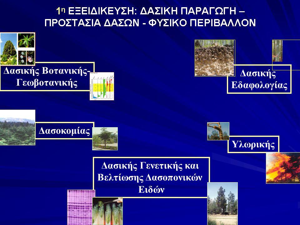 Δασικής Βοτανικής- Γεωβοτανικής Δασικής Γενετικής και Βελτίωσης Δασοπονικών Ειδών Δασοκομίας Υλωρικής Δασικής Εδαφολογίας