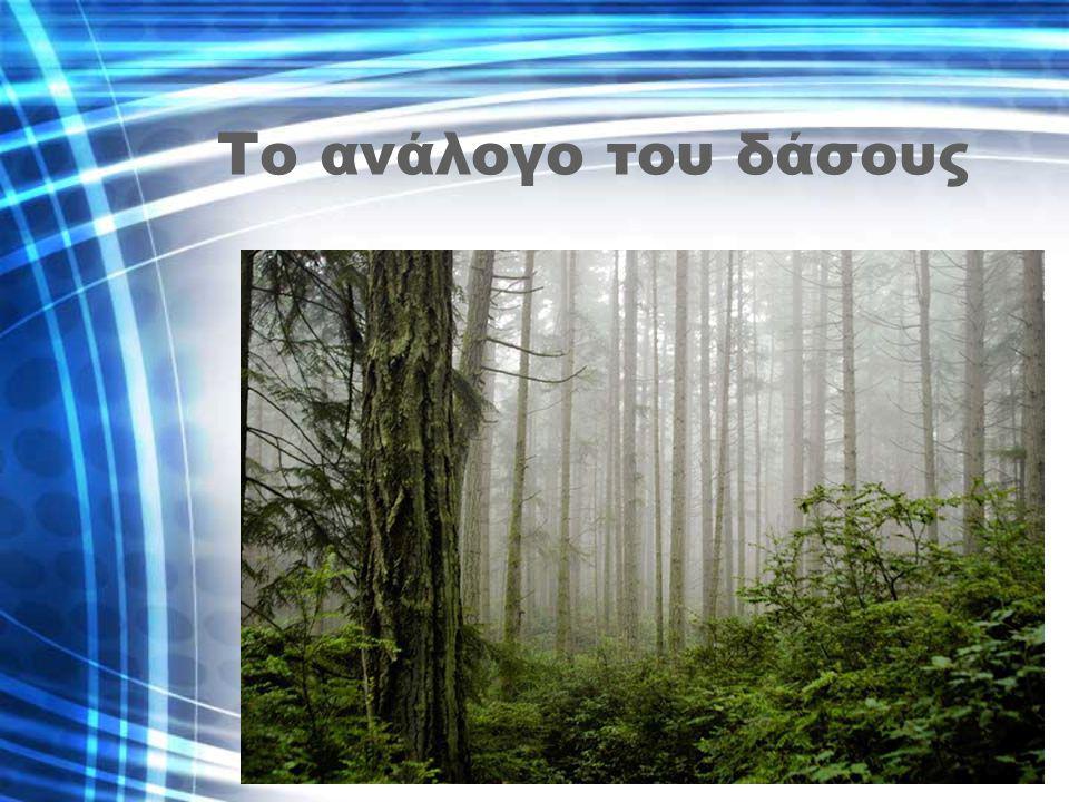 Tο ανάλογο του δάσους