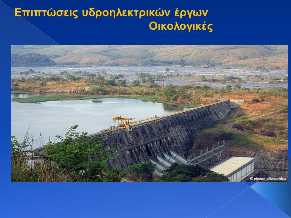 Επιπτώσεις υδροηλεκτρικών έργων Οικολογικές