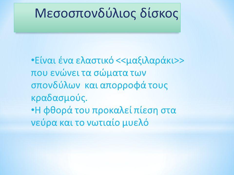 Μεσοσπονδύλιος δίσκος Είναι ένα ελαστικό > που ενώνει τα σώματα των σπονδύλων και απορροφά τους κραδασμούς. Η φθορά του προκαλεί πίεση στα νεύρα και τ