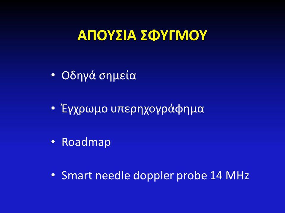 ΑΠΟΥΣΙΑ ΣΦΥΓΜΟΥ Οδηγά σημεία Έγχρωμο υπερηχογράφημα Roadmap Smart needle doppler probe 14 MHz
