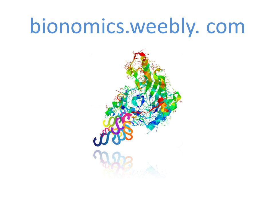 bionomics.weebly. com