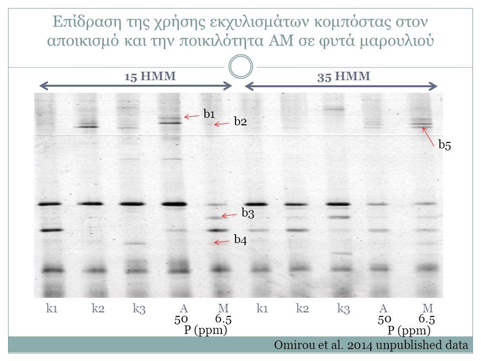 50 6.5 P (ppm) 50 6.5 P (ppm) 15 HMM 35 HMM k1k2k3AMk1k2k3AM b3 b4 b1 b2 b5 Επίδραση της χρήσης εκχυλισμάτων κομπόστας στον αποικισμό και την ποικιλότητα ΑΜ σε φυτά μαρουλιού Omirou et al.
